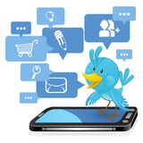 Bluebird social dos media da coligação Imagens de Stock Royalty Free