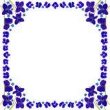 BlueBlossomsFrameSquareWhite Royalty-vrije Stock Fotografie