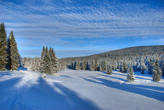 BlueBlue Winter-Himmel in den Jizera Bergen Lizenzfreie Stockbilder