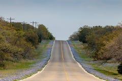 Bluebonnets выравнивают шоссе к северу от Llano Техаса стоковые изображения rf