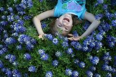 Bluebonnets  Images libres de droits