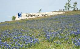 Bluebonnets in Washington County. Field of bluebonnets in front of Washington County welcome sign in Texas stock photo