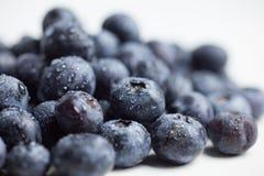 Blueerries sur le fond blanc Photographie stock libre de droits