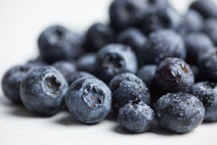 Blueerries sur le fond blanc Photographie stock