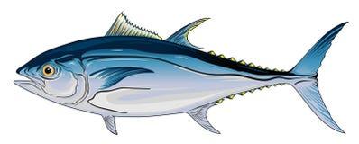 Bluefintonfisk stock illustrationer