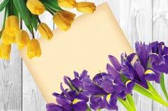 Λουλούδι Blueflag ή ίριδων και κίτρινες τουλίπες με τη ευχετήρια κάρτα Στοκ φωτογραφίες με δικαίωμα ελεύθερης χρήσης