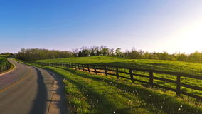 Bluegrass horse farm stock video footage