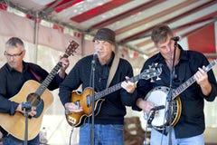 Bluegrassband - Georgisch Blauw van Ontario, Canada Stock Foto's