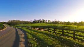 Bluegrasspferdebauernhof stock video footage