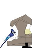 bluejay karmienie ilustracja wektor