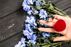 bluen blommar flickan royaltyfria foton