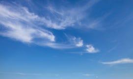 bluen clouds skyen field treen Royaltyfria Foton