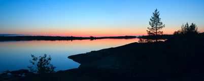 bluen colors rosa white för natt Royaltyfri Bild