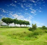 bluen fields den gröna skyen Arkivbild