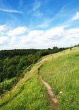 bluen fields den gröna skyen arkivfoton