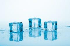 bluen skära i tärningar is Fotografering för Bildbyråer