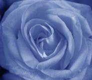 bluen steg Arkivfoto