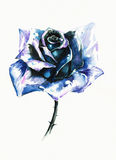bluen steg Royaltyfria Bilder
