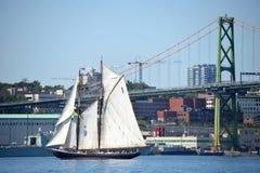Bluenose II在哈利法克斯港口 免版税图库摄影