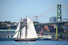 Bluenose II no porto de Halifax Fotografia de Stock Royalty Free
