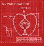Blueprint dessin au trait diagramme d'une pomme rouge Image libre de droits
