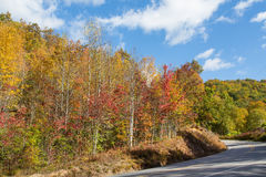 Blueridgebrede rijweg met mooi aangelegd landschap in Noord-Carolina stock foto's