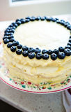 Bluerries och vit chokladkaka Arkivfoton
