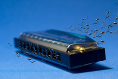 The Blues Harmonica Royalty Free Stock Images