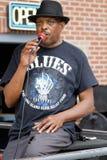 Blues Singer Royalty Free Stock Image