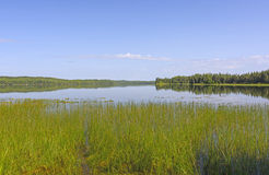 Blues Skies Over an Open Lake Royalty Free Stock Photo