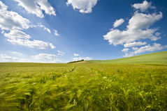 Blues sky ,clouds and fields Stock Images