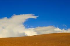 bluesky пустыня n Стоковые Фотографии RF