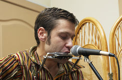 Bluesman en el concierto 9 Fotografía de archivo libre de regalías