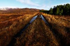 Bluestack山的全景在有一个湖的Donegal爱尔兰前面的 免版税库存图片