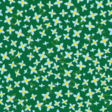 Bluet seamless pattern Stock Photo