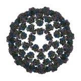Bluetongue Wirus (BTV) Obraz Stock