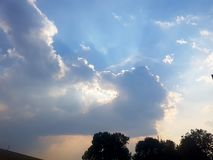 Blueutiful arkivbild