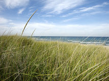 Bluff at beach with dune grass. Looking through dune grass onto a Lake Michigan beach Royalty Free Stock Image