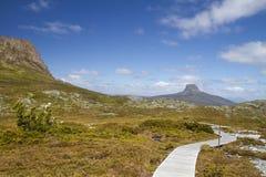 Bluff de grange, montagne de berceau, Tasmanie photos libres de droits