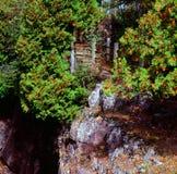 Bluff de rivière de modération - Minnesota Image libre de droits
