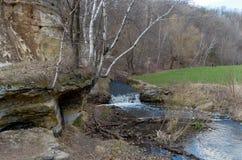 Bluff del parco e di Battle Creek Fotografia Stock Libera da Diritti