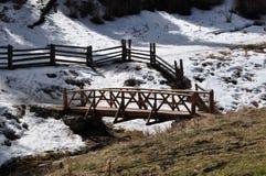 Bluff della primavera, New Mexico Fotografia Stock