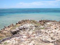 Bluff di Eagle, baia dello squalo, Australia occidentale Immagini Stock Libere da Diritti