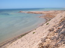Bluff di Eagle, baia dello squalo, Australia occidentale Immagini Stock