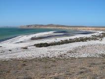 Bluff di Eagle, baia dello squalo, Australia occidentale Fotografia Stock Libera da Diritti