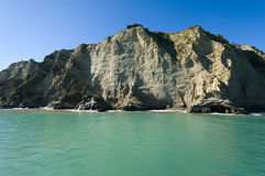 The Bluff at Tolaga Bay Stock Photography