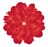 Blume 02 Lizenzfreie Stockfotografie