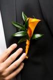 Blume auf Bräutigam Lizenzfreie Stockbilder