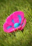 Blume auf dem Gras Lizenzfreie Stockbilder