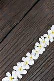 Blume auf Holz Stockbild
